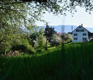 Auenhof bei Feldbach